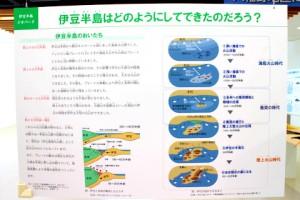 展示パネル: 伊豆半島はどのようにしてできたのだろう?