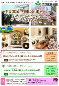 桜ツアー1